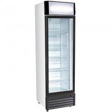 Expositor Vertical Congelación 360 litros 1 Puerta de 650 x700 x2025h mm FS-360F